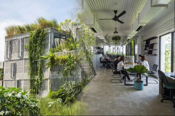 Văn phòng nét quê tại Đà Nẵng - Đưa thiên nhiên vào tận bàn làm việc