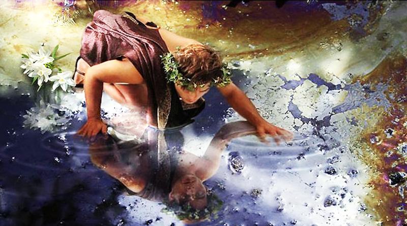 Sự tích hoa thủy tiên: Ích kỷ là khởi nguồn của những bi kịch trên đời