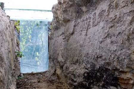 Tảng đá mang thông điệp bí ẩn có từ 270 triệu năm trước - ảnh 5