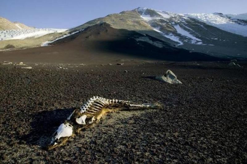 Cửa địa ngục núi Côn Lôn và các hiện tượng biến mất không lời giải - ảnh 4