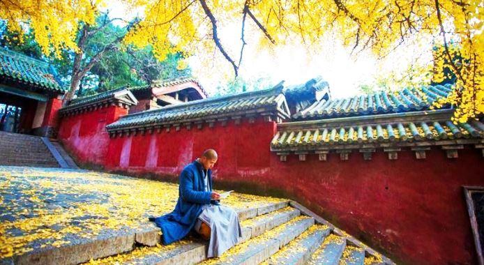 Diêm Vương xét xử 5 vị tăng nhân: Vì sao diễn giảng kinh Phật lại là đại tội?