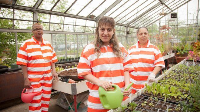 Thiên nhiên kỳ diệu: Vườn tù Rikers Island làm thay đổi nhiều phạm nhân. 1