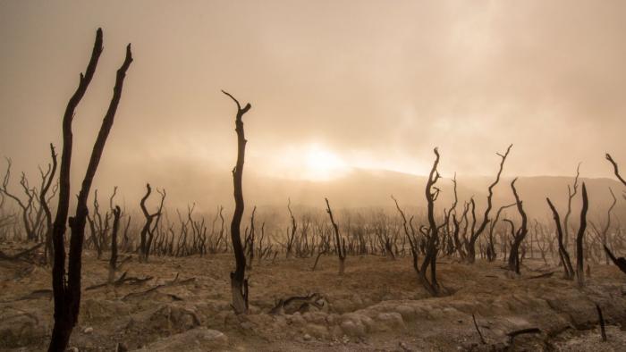 70.000 năm trước, do biến đổi khí hậu, loài người gặp phải nạn diệt vong, dân số giảm còn 2.000 người. (Ảnh: Pixabay)