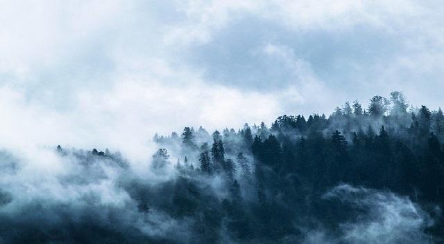 Thế ngoại cao nhân chữa bệnh thần kỳ (P.1): Đại nạn từ trên trời giáng xuống - ảnh 1