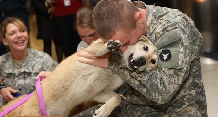 Khoa học xác nhận rằng chó có khả năng nhận biết người xấu.1