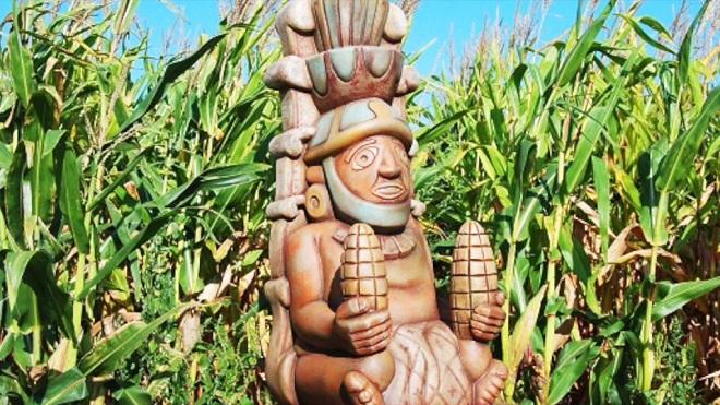 Lịch pháp của người Maya chịu ảnh hưởng từ... cây ngô - H1
