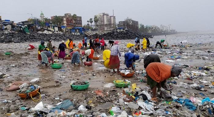 """""""Dự án làm sạch bãi biển lớn nhất"""". (Ảnh từ twitter AfrozShah1)"""