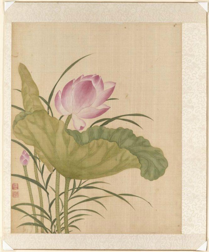 Flower Power - Triển lãm hoa châu Á đầy ý nghĩa tại San Francisco - H3