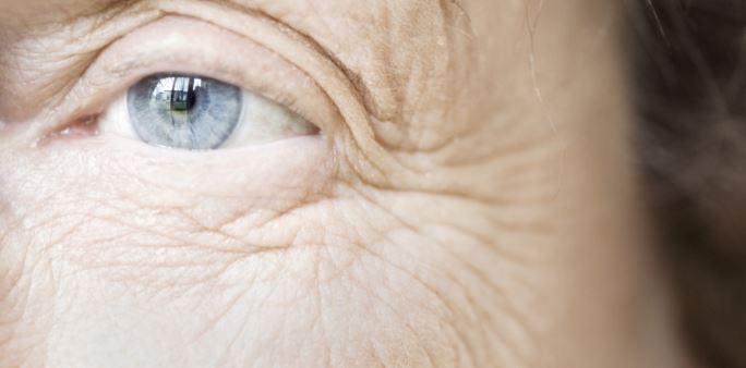 7 lý do đáng kinh ngạc để đưa nước cây phỉ vào tủ thuốc của bạn - H4