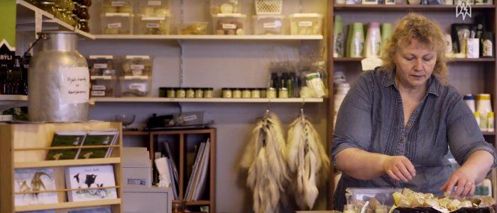Gặp gỡ người phụ nữ cứu loài dê Iceland khỏi tuyệt chủng.4