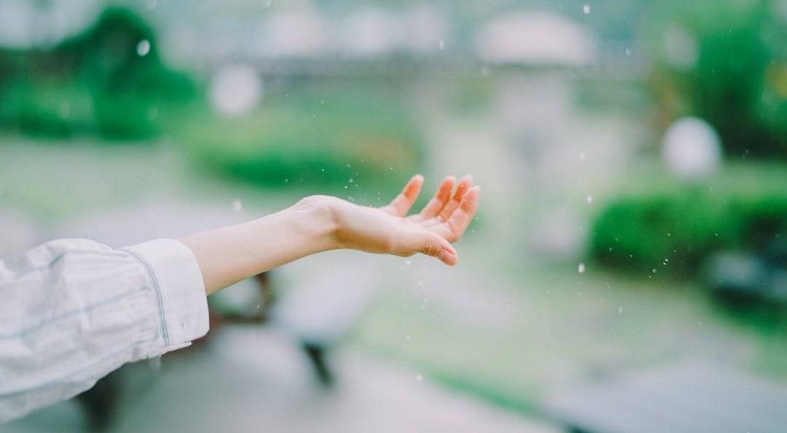 Hạnh phúc thật đơn giản, nhưng trước hết hãy buông bỏ bất bình trong tâm
