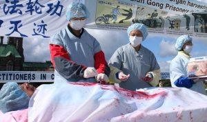 BBC ra loạt phóng sự về tội ác mổ cướp nội tạng ở Trung Quốc