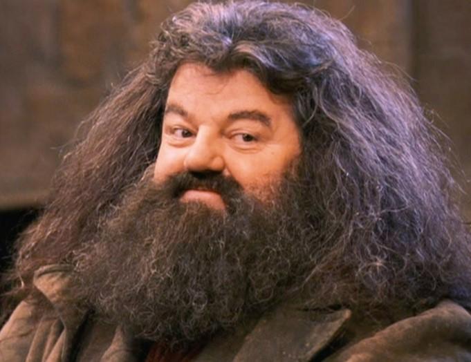 Bật mí ý nghĩa thú vị đằng sau những cái tên nhân vật trong bộ phim Harry Potter.2