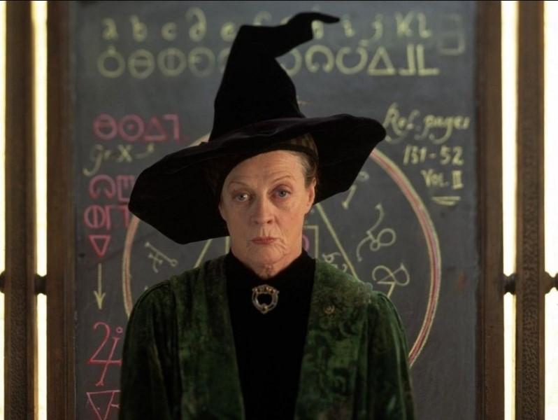 Bật mí ý nghĩa thú vị đằng sau những cái tên nhân vật trong bộ phim Harry Potter.9