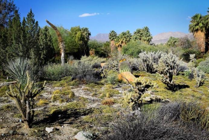 Khám phá kỳ quan tại công viên sa mạc giữa xứ cờ hoa.2