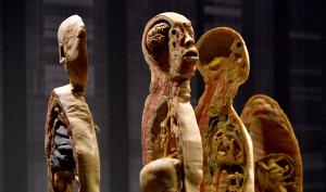Sau TP.HCM, đến thành phố Thụy Sĩ cấm triển lãm thi thể người