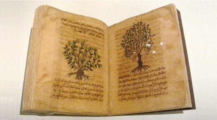 Trí tuệ cổ nhân: Văn thư cổ là nguồn gốc của một số đột phá y học hiện đại - H1