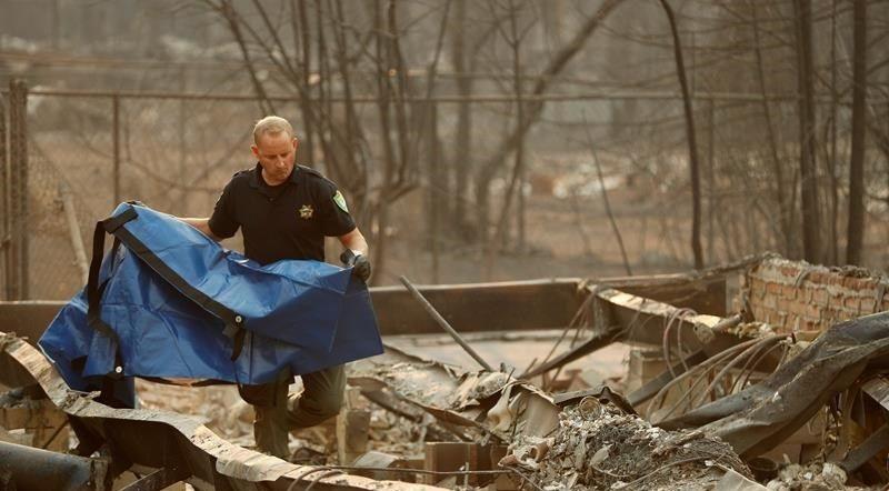 Cháy rừng ở California: Hơn 40 người chết, hàng trăm người mất tích