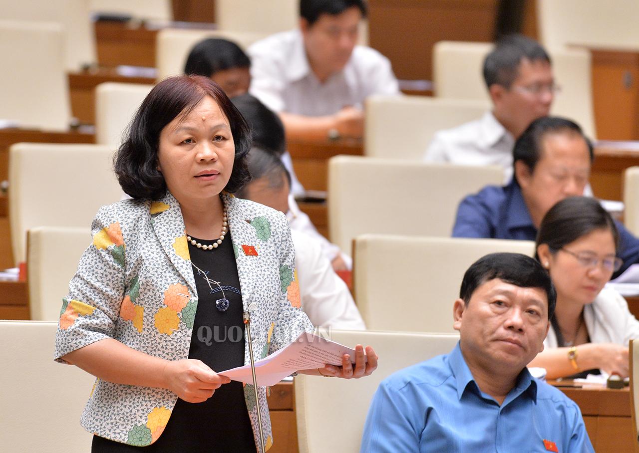 Đại biểu Quốc hội Nguyễn Thị Mai Hoa, Đoàn Đại biểu Quốc hội tỉnh Đồng Tháp