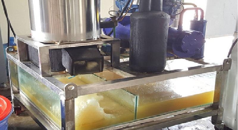 Máy sản xuất đá tuyết từ nước biển