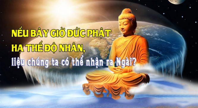 Nếu bây giờ Đức Phật hạ thế độ nhân, liệu chúng ta có thể nhận ra Ngài?1
