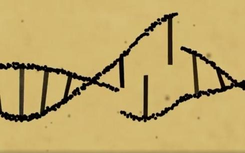 Hình ảnh về gene. Ảnh: CNN.