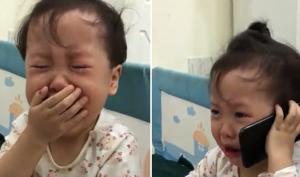 Chịu không nổi bố nữa, bé gái gọi điện mách ông nội trong nước mắt