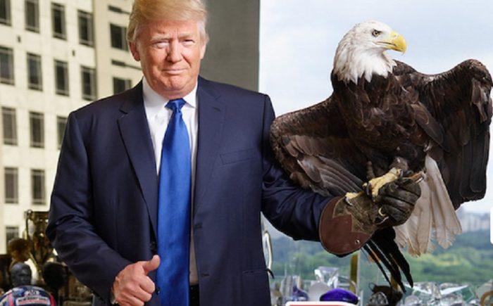 """Trung Quốc bừng tỉnh: Trump là """"diều hâu"""", chứ không phải """"hổ giấy"""".1"""