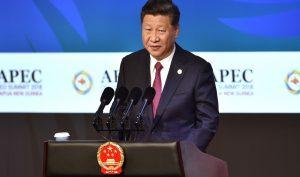 Chủ tịch Trung Quốc Tập Cận Bình tại APEC CEO Summit 2018. (Ảnh qua Reuters)