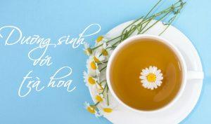 Nghề nhà giáo cần chú ý bảo vệ sức khỏe và dưỡng sinh bằng cách uống trà hoa