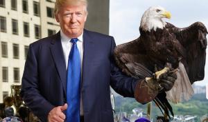 """Trung Quốc bừng tỉnh: Trump là """"diều hâu"""", chứ không phải """"hổ giấy"""""""