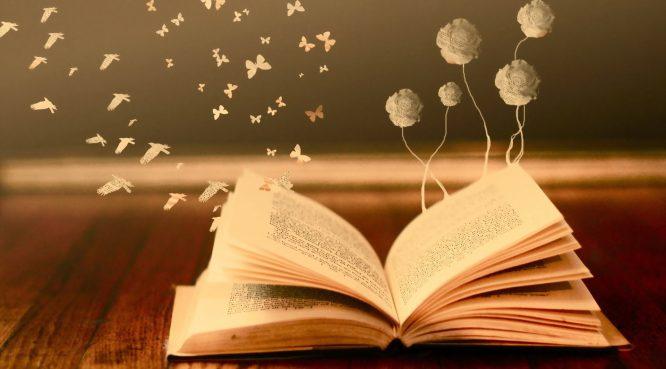 Từ giỏ đựng than ông dạy cháu bài học quý giá của việc đọc sách