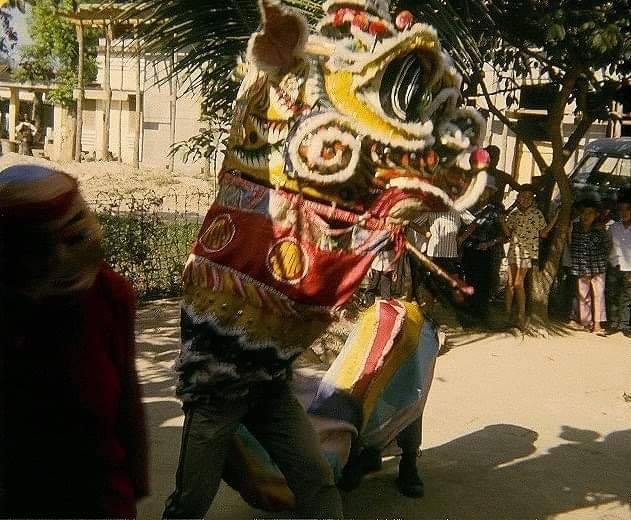 Hoài niệm Tết xưa trên miền quê Lục Tỉnh - ảnh 2