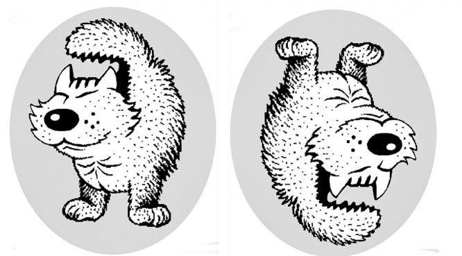 6 bức hình gây rối não, nhìn mãi mới ra còn hình ảnh khác.1