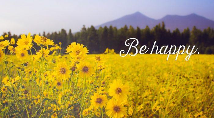 Hạnh phúc hay đau khổ chính là nằm ở việc bạn muốn đứng ở vị trí nào mà nhìn nhận.1