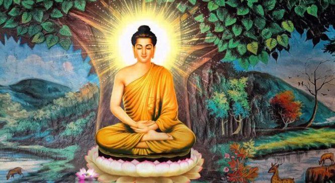 Ý thức của con người có thể liên quan trực tiếp đến ánh hào quang.1