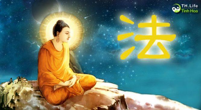 """Hàm nghĩa của chữ """"Pháp"""" trong kinh Phật ám chỉ điều gì? - H1"""