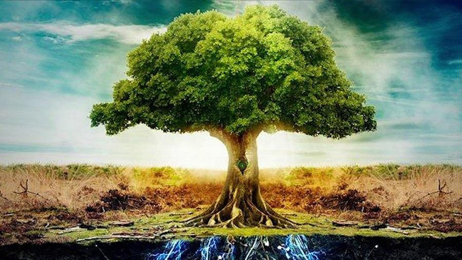 Trục Mundi - Nơi giao hội giữa thiên đường và Trái Đất. Ảnh 1