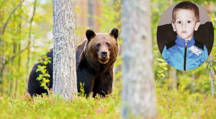 Cậu bé 3 tuổi mắc kẹt trong rừng được mãnh thú bảo vệ trong suốt 2 ngày - H1