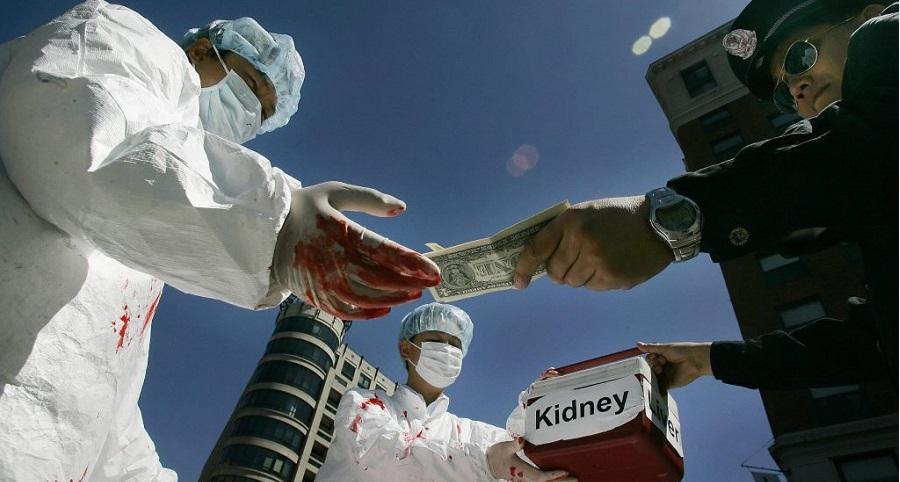 Nạn mổ cướp nội tạng ở Trung Quốc được tiếp tay bởi tham nhũng y tế phương Tây. Ảnh 1