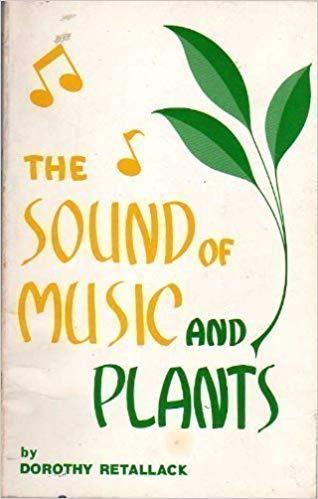 Khám phá thú vị: Thực vật thích nghe nhạc cổ điển và ghét nhạc rock. Ảnh 1