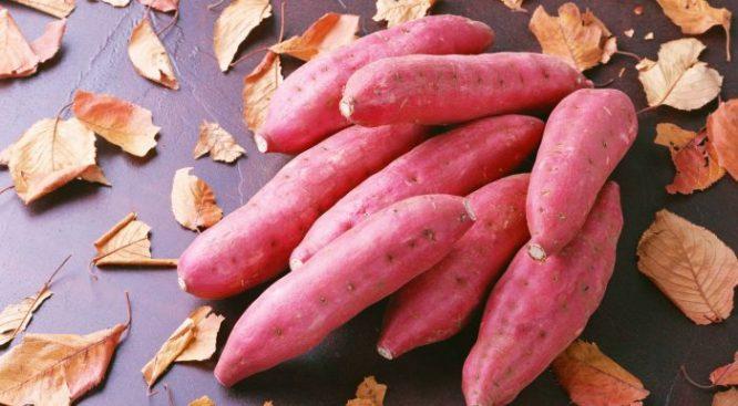 5 loại rau củ ăn thường xuyên có tác dụng chống ung thư cực kỳ hiệu quả - H1