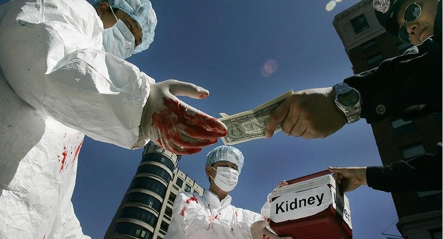 Ủy ban Nghị viện Canada bỏ phiếu thuận về Dự luật chống buôn bán nội tạng