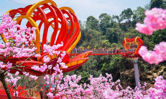 Cầu kính Mộc Châu chính thức khánh thành thu hút hàng trăm du khách. 7