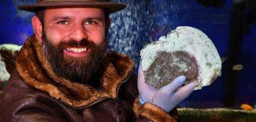Tìm thấy chiếc mặt nạ cổ 10.000 năm tuổi chế tác từ 'Kim loại hiếm ngoài Trái đất'