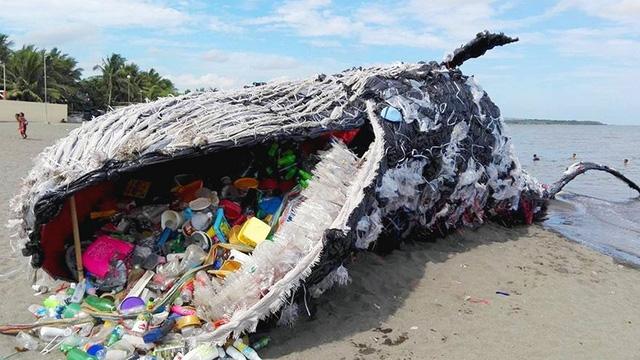 Cá nhà táng mẹ chưa kịp sinh con đã chết vì nuốt 22kg rác nhựa