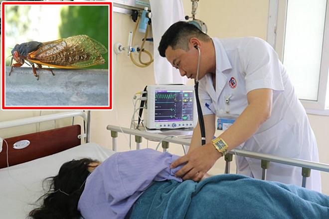 Một trường hợp bệnh nhân khác cũng được cấp cứu tại Bệnh viện Việt Nam - Thụy Điển sau khi bị sốc phản vệ do ăn trứng kiến. (Ảnh qua baomoi)