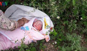 Sơn La: Bé sơ sinh bị bỏ rơi trong rừng, toàn thân đầy vết côn trùng cắn