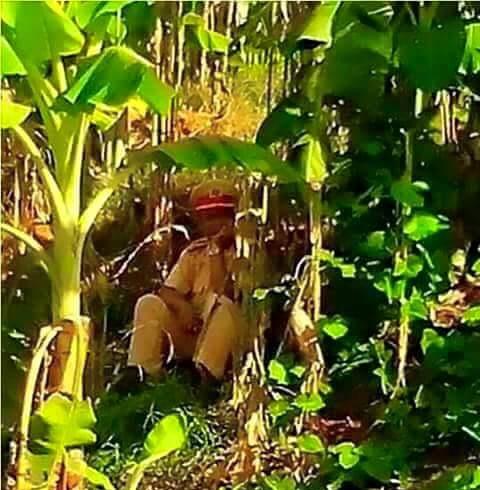 CSGT được phép núp vườn chuối, ngọn cây, nóc nhà để bắn tốc độ... 3