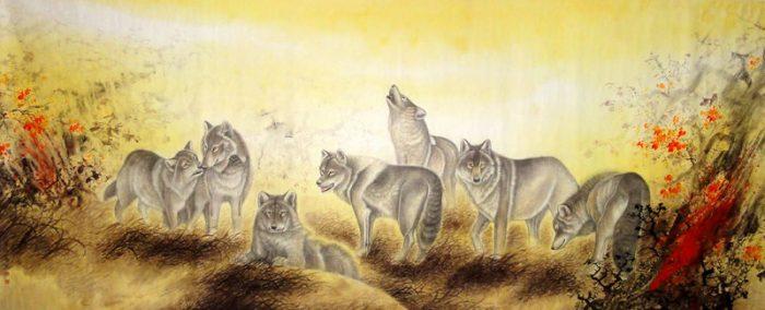 Vị thần núi đã chuyển sinh thành một con sói trên núi Phượng Hoàng.